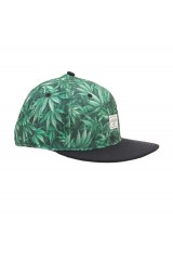 CAYLER & SONS 2Tone Lifted Print Snapback Cap